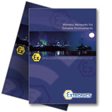 VisionID Wireless Networks for Extreme Environments Brochure